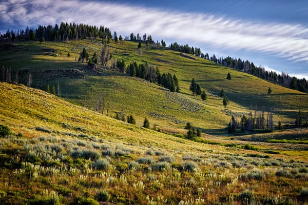 Sawtooth Foothills II | Shop Photography by Rick Berk