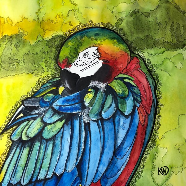 Parrot Art | Water+Ink Studios