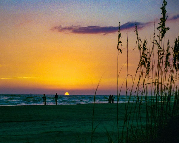 Sea Oats Sunset Photography Art | It's Your World - Enjoy!