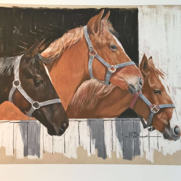 Horse Gallery