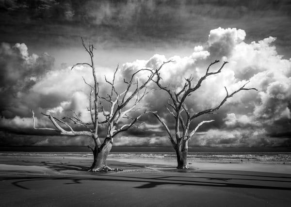 The Boneyard Photography Art | Art Sea Love