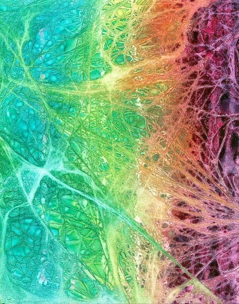 Variegated Threads Art | Lynne Medsker Art & Photography, LLC