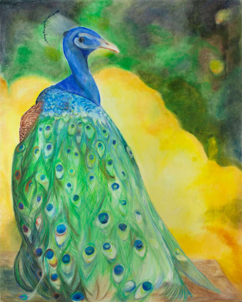 Peacock Art | RPAC Gallery