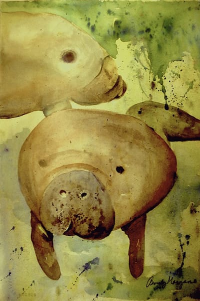 Manatees, From an Original Watercolor Painting