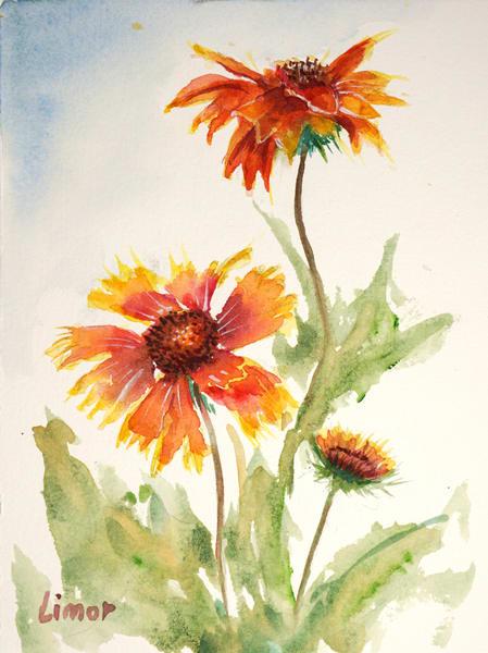Blanket Flower Art   Limor Dekel Fine Art