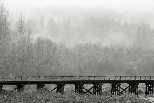 Railroad Trestle, Lewis County, Washington, 2015