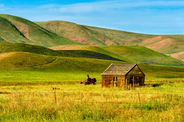 Remnants of an Old Farm, Yakima County, Washington, 2013