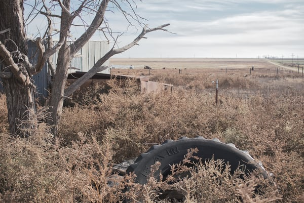 Never Tyred Of Texas Art | Martin Geddes Photography