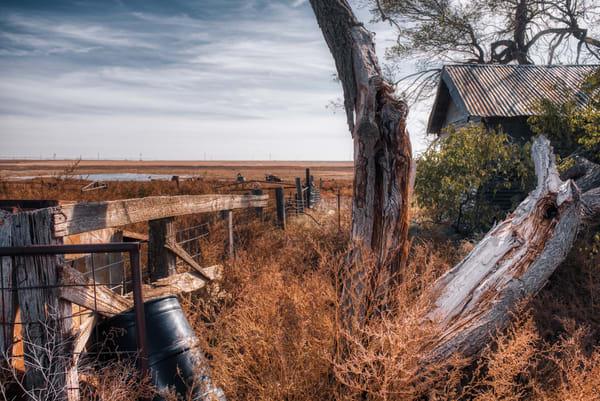 Texan Tones Art | Martin Geddes Photography