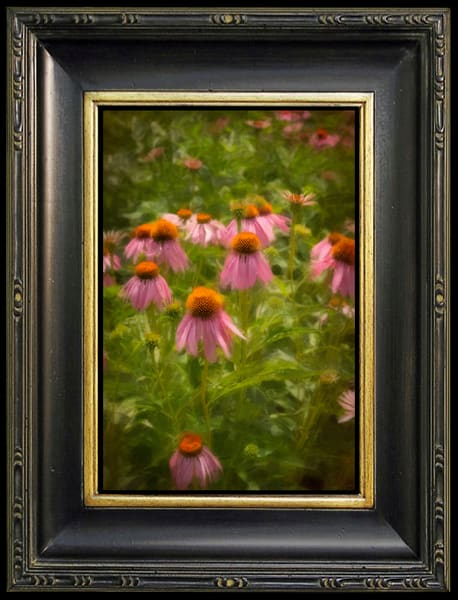 Digitalis, Limited Edition, Ben Fink, Art Prints,