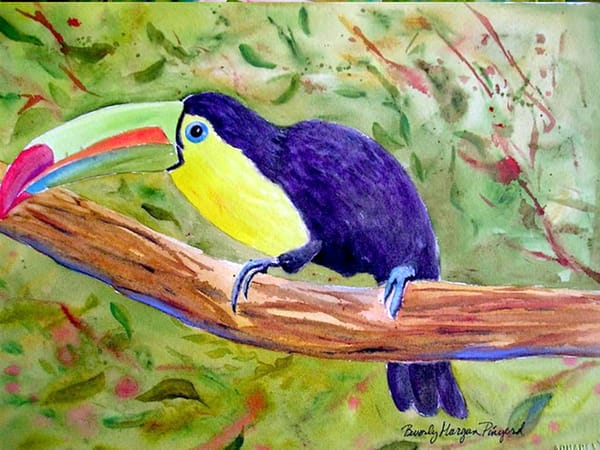 Toucan, From an Original Watercolor Painting