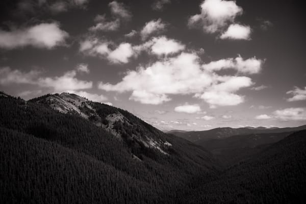Twin Camp Creek Valley, Washington, 2020