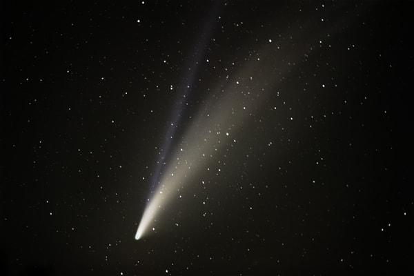 Neo Wise Comet Art   Chad Wanstreet Inc