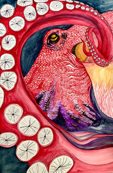 octopus ocean animal red artwork print watercolor