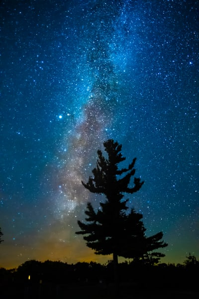 Night Sky Tree Magic Stars