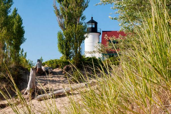 Point Beach Tall Grass