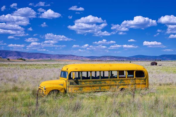 California School Bus Photography Art | Shaun McGrath Photography