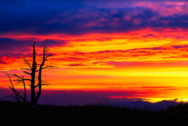Smokey Sunset on Cooper Mountain, Washington, 2007