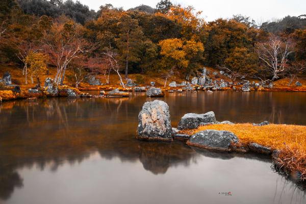 Zen Garden, Japan, Lake, Orange