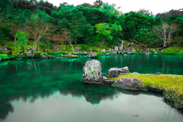 Zen Garden, Japan, Lake, Green