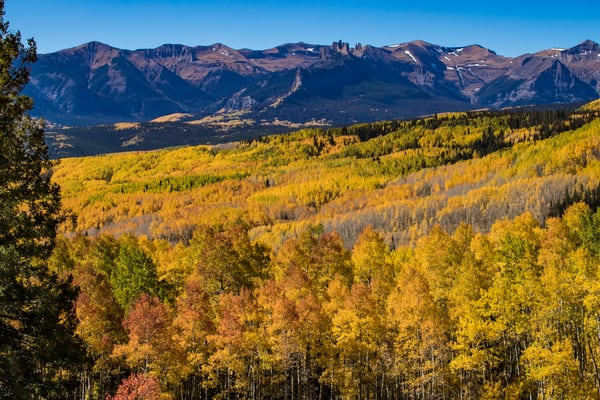 Fall Color In Colorado Photography Art | Kirk Fry Photography, LLC