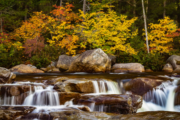 Autumn Beauty Photography Art   Nelson Rudiak Photography