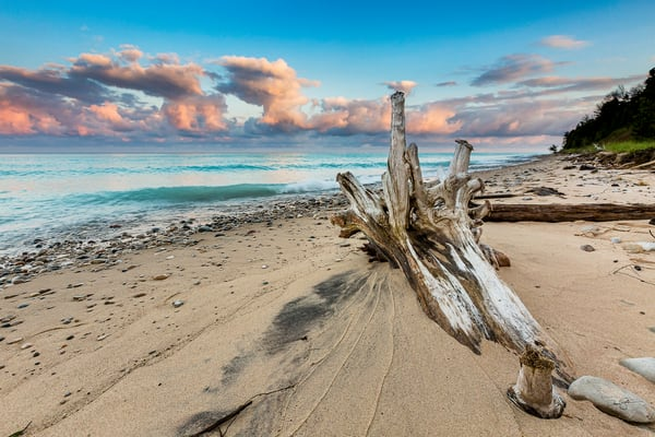 Driftwood Sunrise Photography Art | Drew Smith Photography, LLC