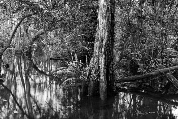 Calm Passage Photography Art | cosimo scianna