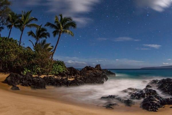 Paradise Under the Moon Light
