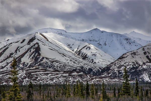 Denali Highway View  Photography Art | Nelson Rudiak Photography