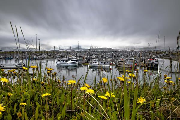 Homer, Alaska  Photography Art | Nelson Rudiak Photography