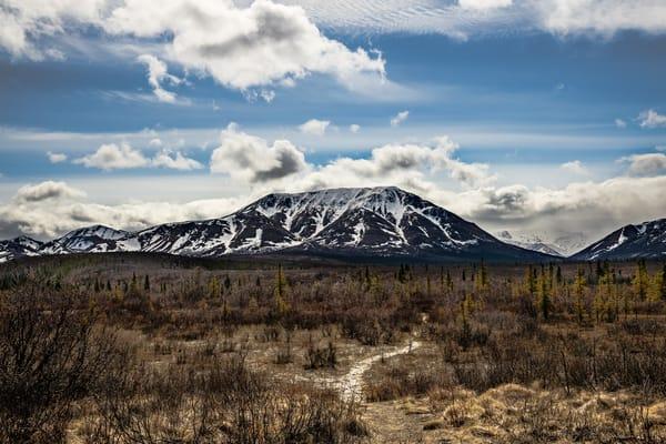 Mountain Vista Trail Photography Art | Nelson Rudiak Photography