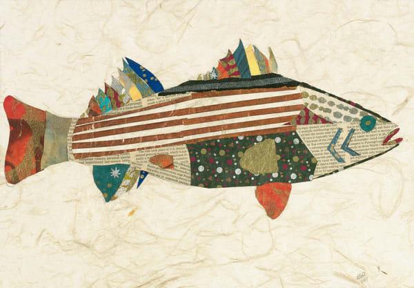 Brian Orr Stripe Bass For Web Art | capeanngiclee
