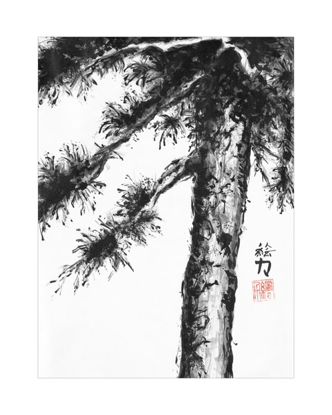 sumi-e, pinetree, eight, black, ink