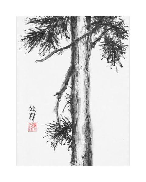 Black & white ink Pinetree Nine print in sumi-e tradition.