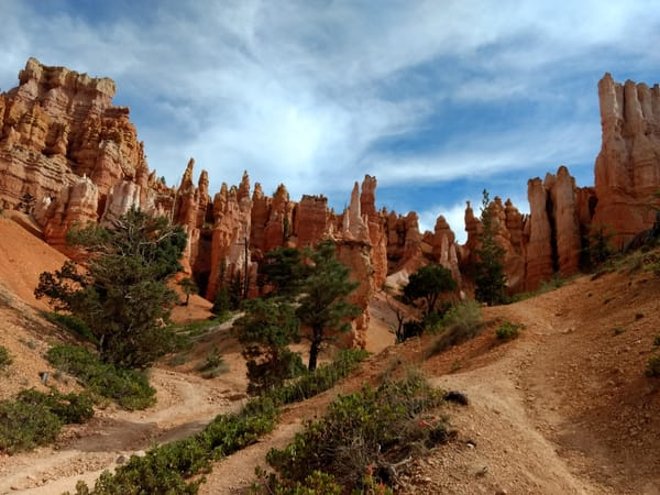 Bryce Canyon View From The Floor Photography Art | Christopher Scott Photography