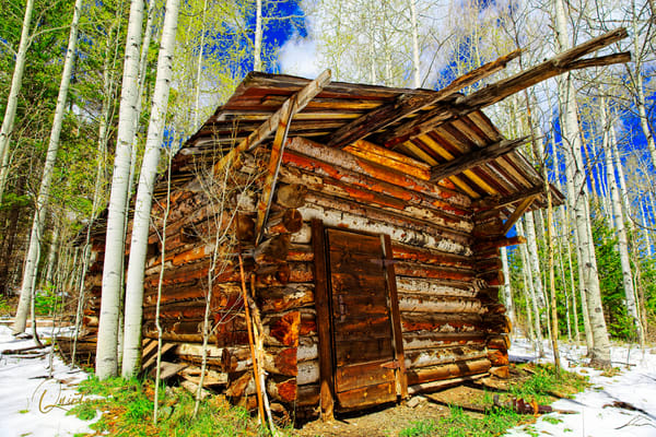 Cabin in Woods - A Fine Art Photograph by Marcos R. Quintana