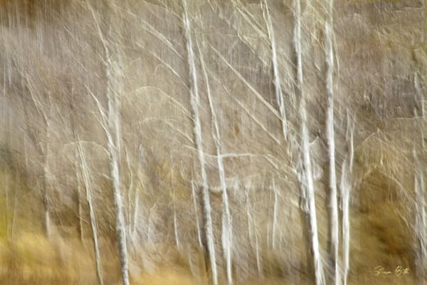 Impressionist Aspen 2 Art | Sharon Beth