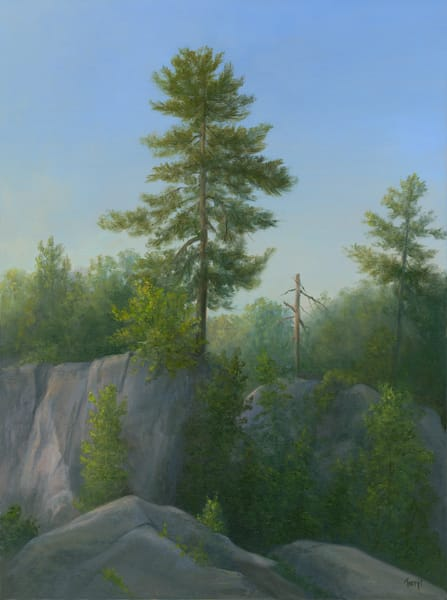 *Tree Portrait, John Burroughs Nature Sanctuary Art | Tarryl Fine Art