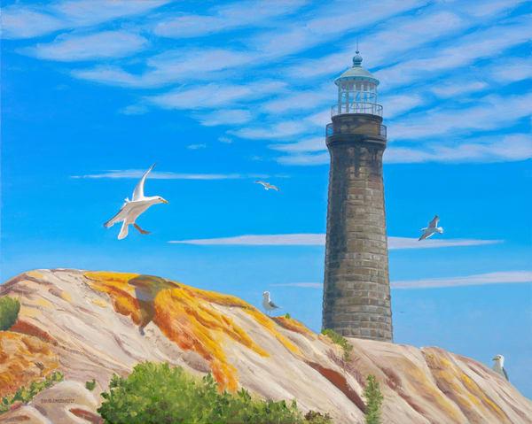 Gull Oriented Art   The Art of David Arsenault