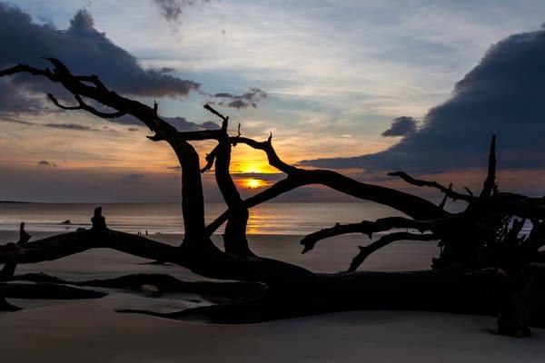Driftwood Framed Sunshine