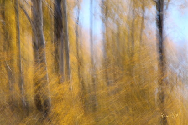 Impressionist Aspen 3 Art | Sharon Beth