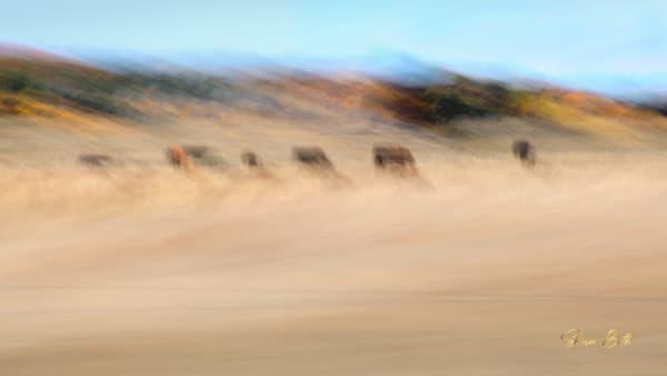 Impressionist Cow Pasture Art | Sharon Beth
