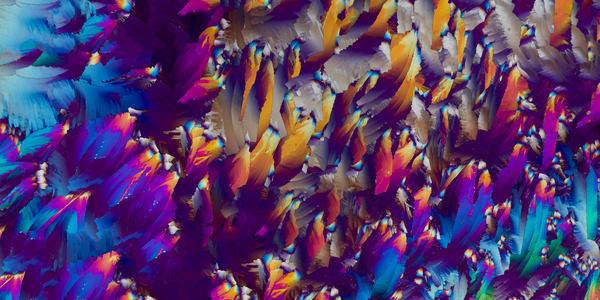 Wind Flower (Urea Crystals) Art | Carol Roullard Art