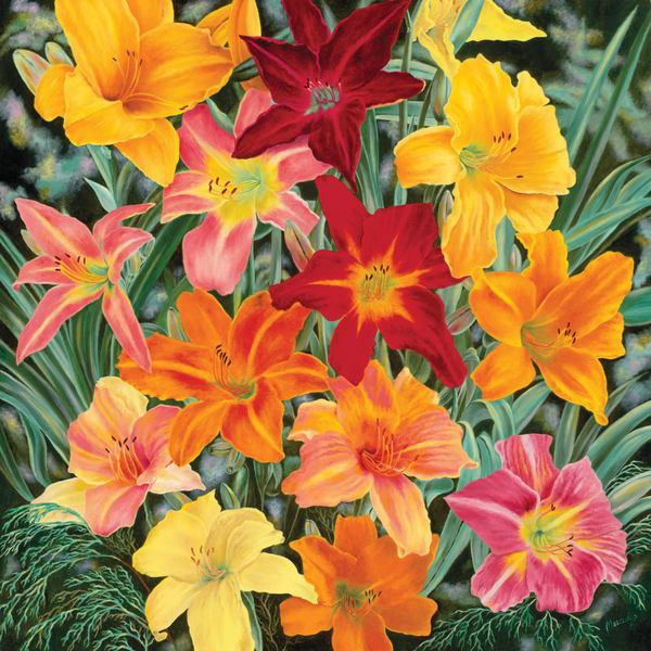 Daylilies   Original Art   Mercedes Fine Art