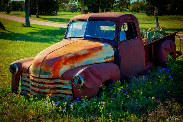 Rusty Cactus Pickup Photography Art | Michael Penn Smith - Vision Worker