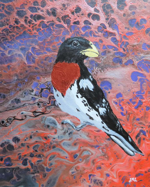 Male Rose Breasted Grosbeak Art | LML Studio Art