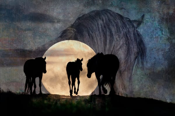 Moonlight On The Pryors Photography Art   Deb Little Photography