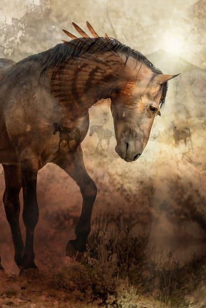 McCullough Peaks Wild Horses