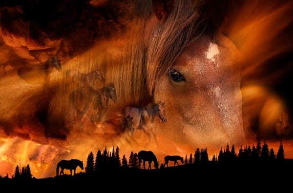 Firestorm On The Mountain Photography Art | Deb Little Photography